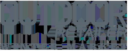 winter logo